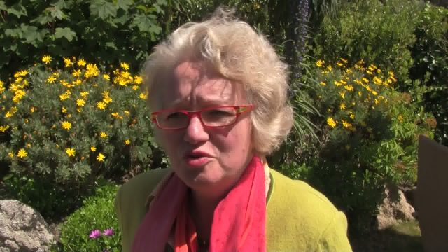 sabine schraudolph joint chair of island tourism