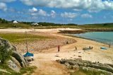 Bid to Eradicate Rats From St Agnes