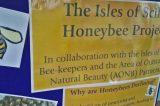 Honey Bee Project To Raise Awareness Of Varroa Mite