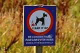 New Dog Poo Rules Could Be Scilly Council's 'Biggest Success'