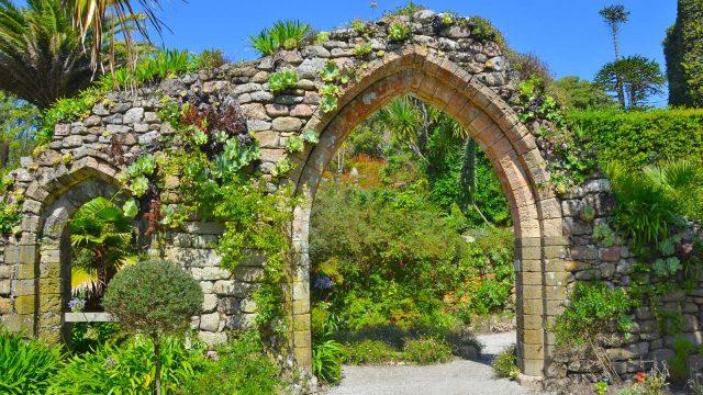 tresco abbey gardens 2