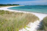 Major US Newspaper Recommends Scilly Beach and Ice Cream