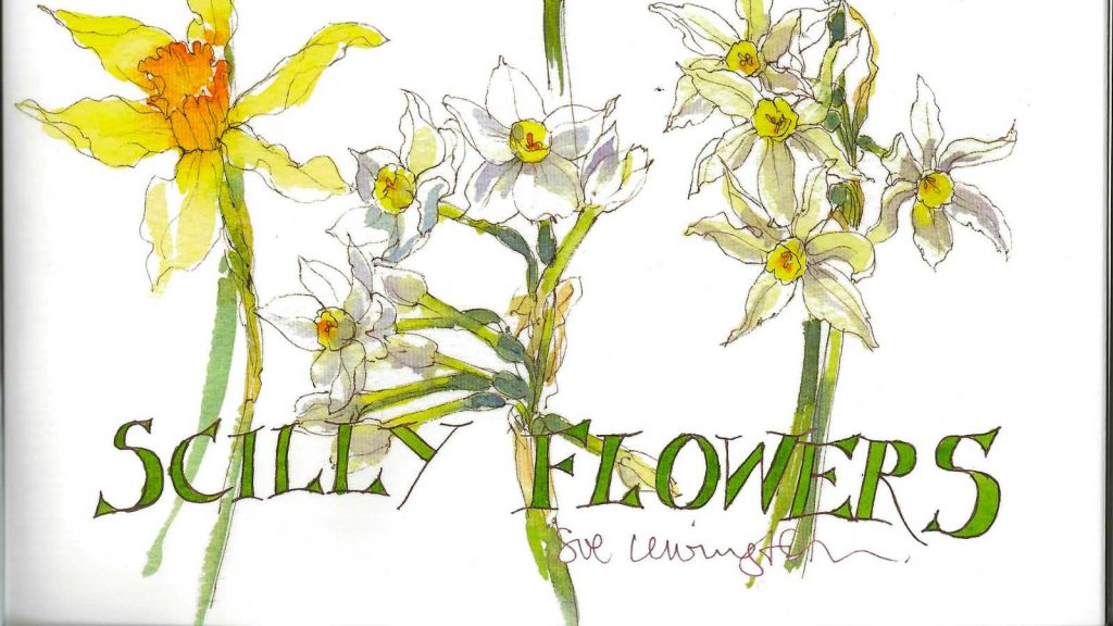 sue lewington scilly flowers book