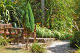 Your Chance To Take A Look At Some Of Scilly's Hidden Gardens