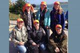 Major Seabird Survey Gets Under Way In Scilly