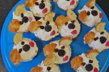 Guide Dog 'Pupcakes' Proving A Hit On Tresco