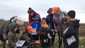 seabird project st agnes school